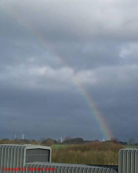 rainbow in the dark...