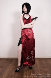 Ada Wong - Bitch in the red dress by MasterCyclonis1