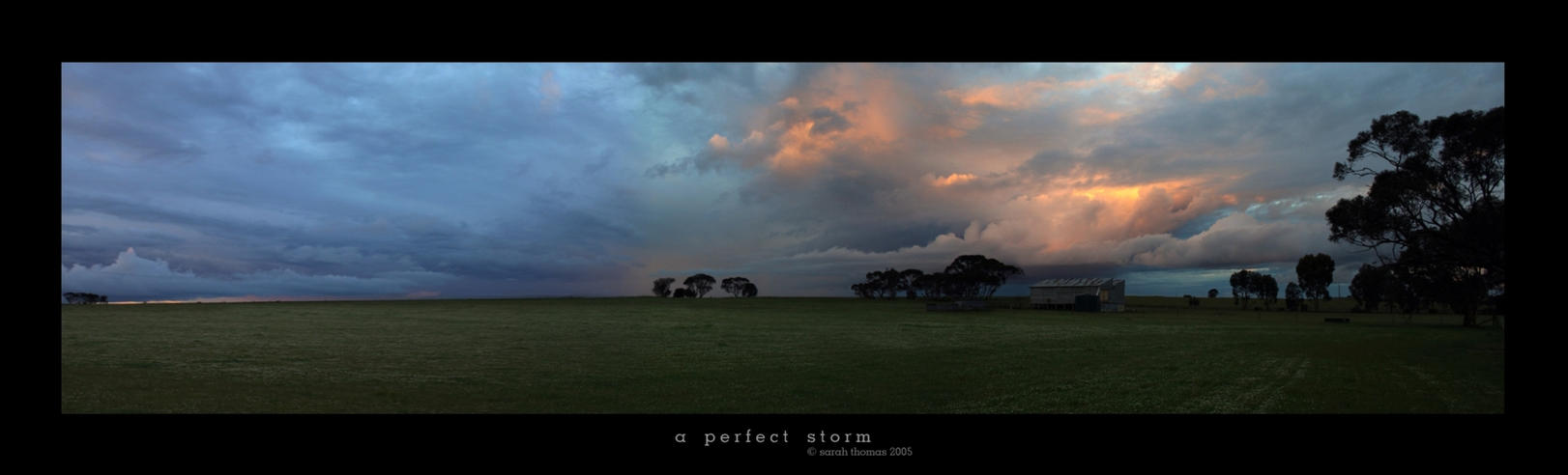 A Perfect Storm by Gregoria