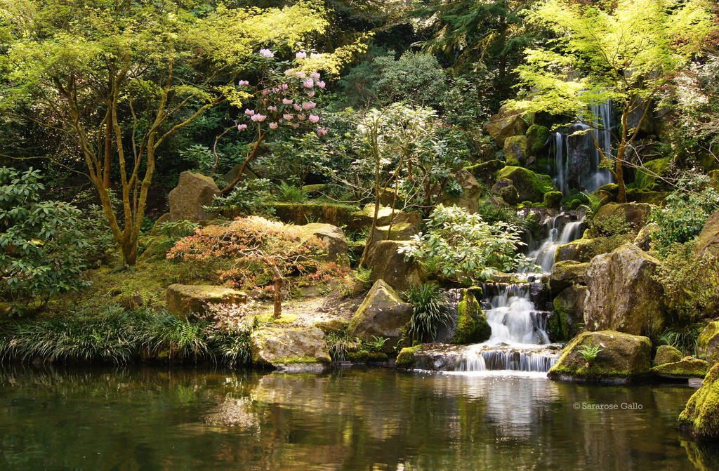 Japanese Garden 1 by ScooterTheDog