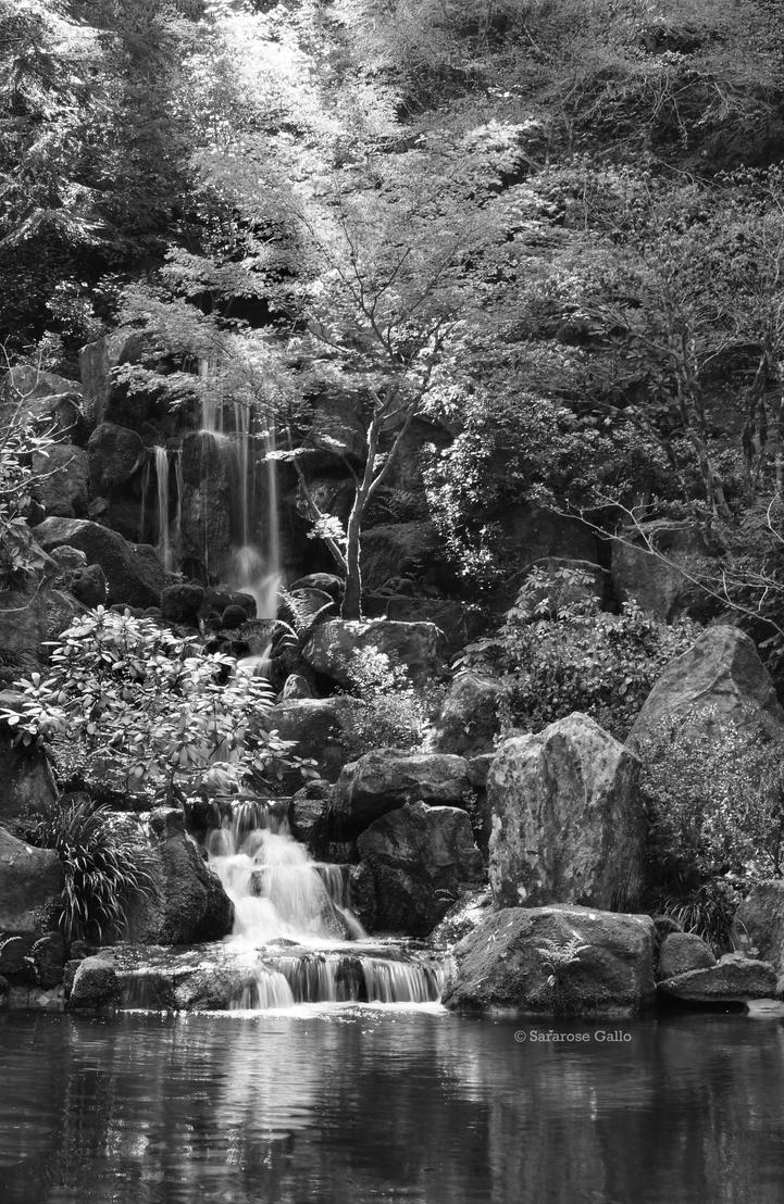Japanese Garden 2 by ScooterTheDog