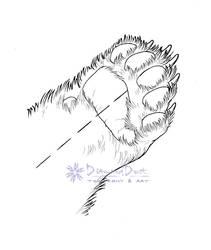 Bear Paw Skinning Diagram by DiamondDustTaxidermy