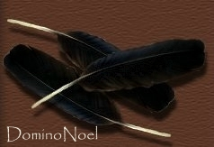 DominoNoel's Profile Picture