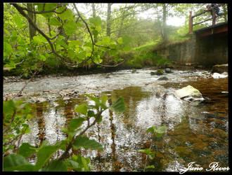 June River by PunxAngel