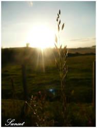 Sunset by PunxAngel
