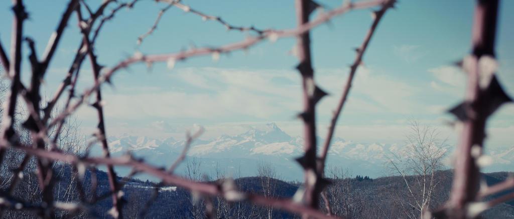 Il Monviso tra i rovi by LacrimeDiDiamante