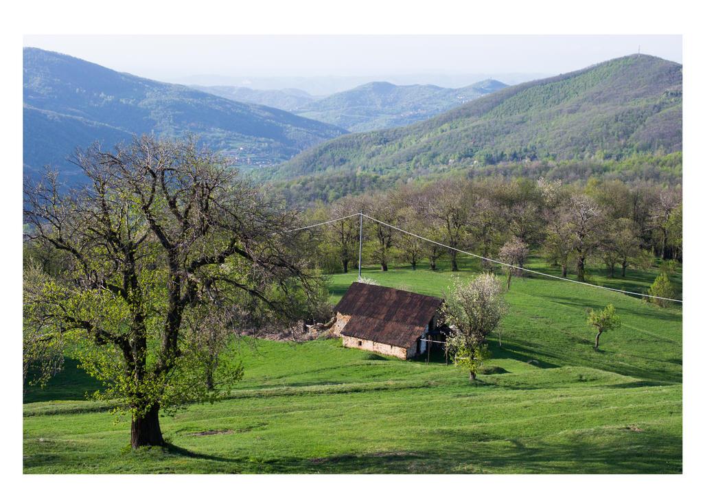 The Shire of Viola Castello by LacrimeDiDiamante