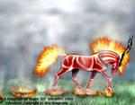 Heat - Rings of Fire