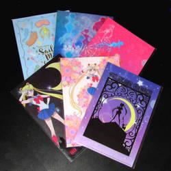 Sailor moon 711 clear file set by avaneshop