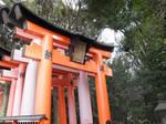 Fushimi Inari Shrine by mackymole