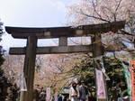 Ueno Park by mackymole