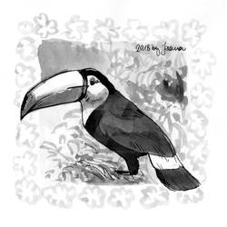 Toucan - Inktober2018 Day 22: Expensive