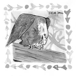 Eagle - Inktober2018 Day 24: Chop
