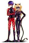 Miraculous Ladybug: Gender bender (2)