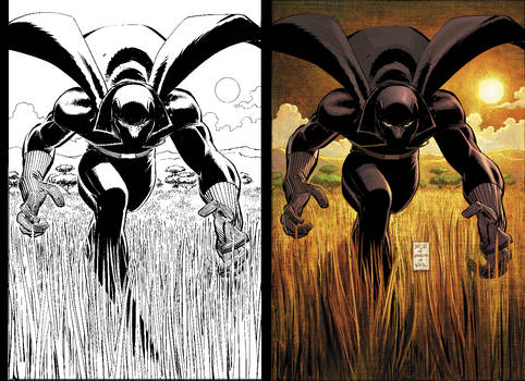 Black Panther 1 BW to Color