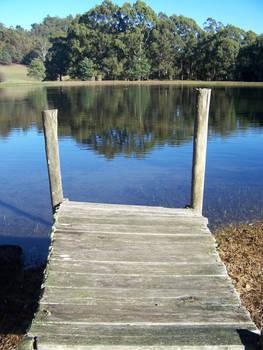 Old Jedi Onto Lake -Reflection