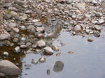 Rocks And Water 05