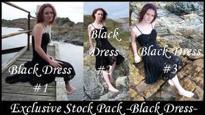 Exclusive Stock -Black Dress-