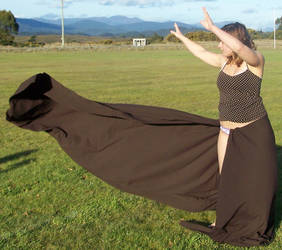 Brown Dress - Movement - 01