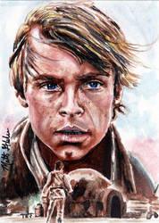 Luke Skywalker's Destiny by Twynsunz