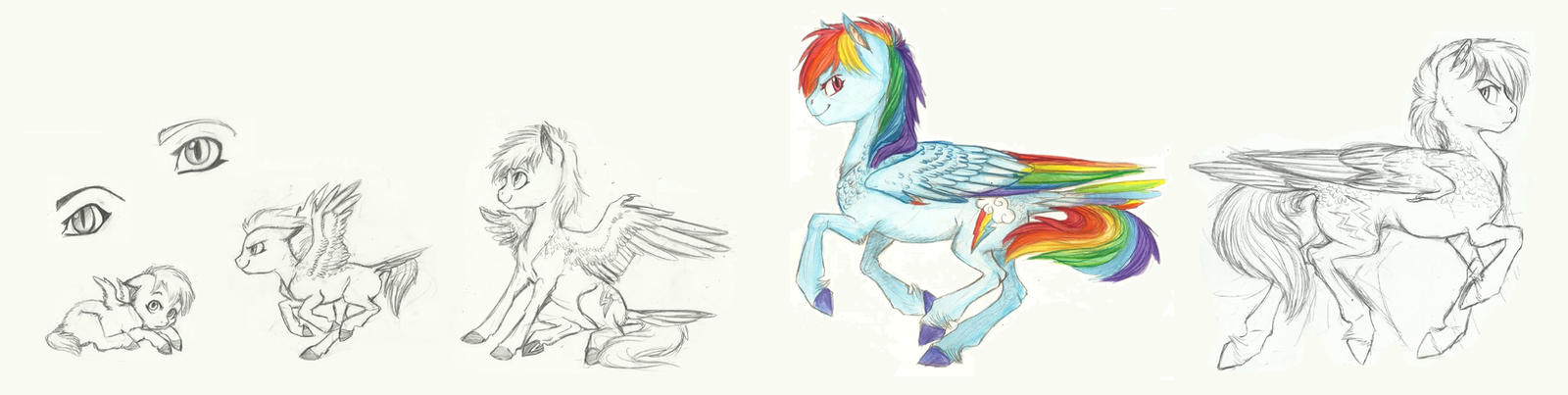 Rainbow Dash: Age thingy