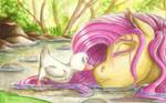 Summertime Nap
