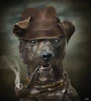Sherlock Dog by ThyC-Graphics