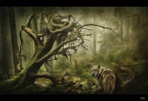 La taniere du Loup by ThyC-Graphics