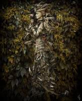 Temps...de feuilles. by ThyC-Graphics