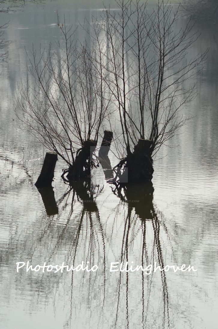 Wasser Spiegelung by DarkLordEllia