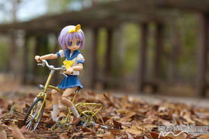 Cycling through the leaves by nutcase23