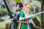 Sword Art Online ALO - Brother and SIster