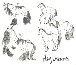 Concept Sketches: Hairy Unicorns by Platyadmirer