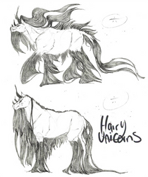 Hairy Unicorns: Floating Hair vs. Non Floating by Platyadmirer