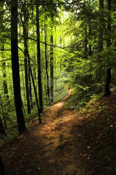 Smokemont Path