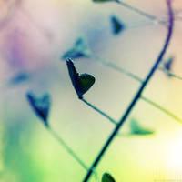 Love love II by dev1n