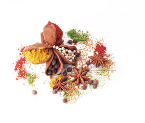 Spices by dev1n