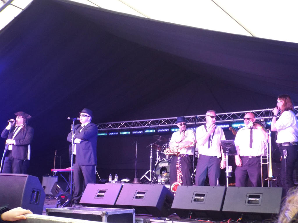 BMAD 2015 Day 3 - The Blues Brothers Collective 4 by Moka898