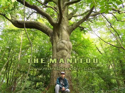 themanitou's Profile Picture