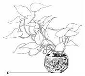 x-gen plant by dinblues
