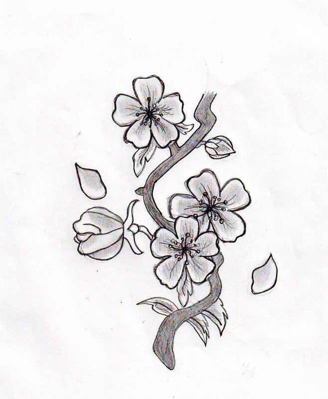 Cherry Blossom Flower by HelloKitten20 on DeviantArt