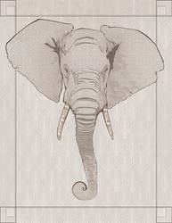 Elephant by annick