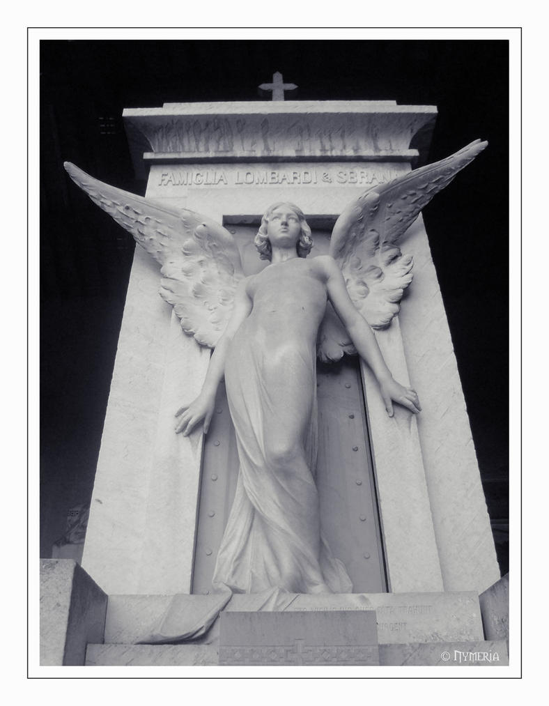 .: Angel :. by NymeriaVonHermoder