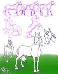 WSC 011011 Horse Study