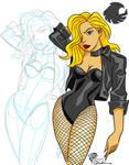 DSC Lovember 28 Black Canary