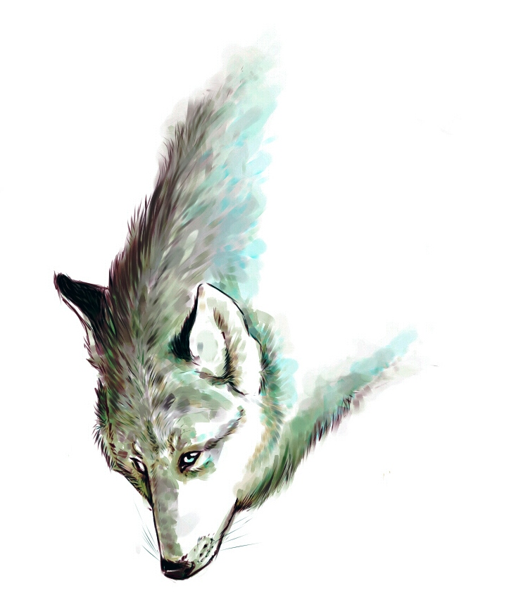 WOLF by IlostMyFang