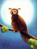 Small Owl by tamaraR
