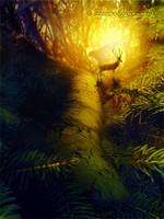 Cervidae Grove by tamaraR