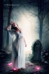 Grave by tamaraR