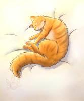 Dreaming by tamaraR